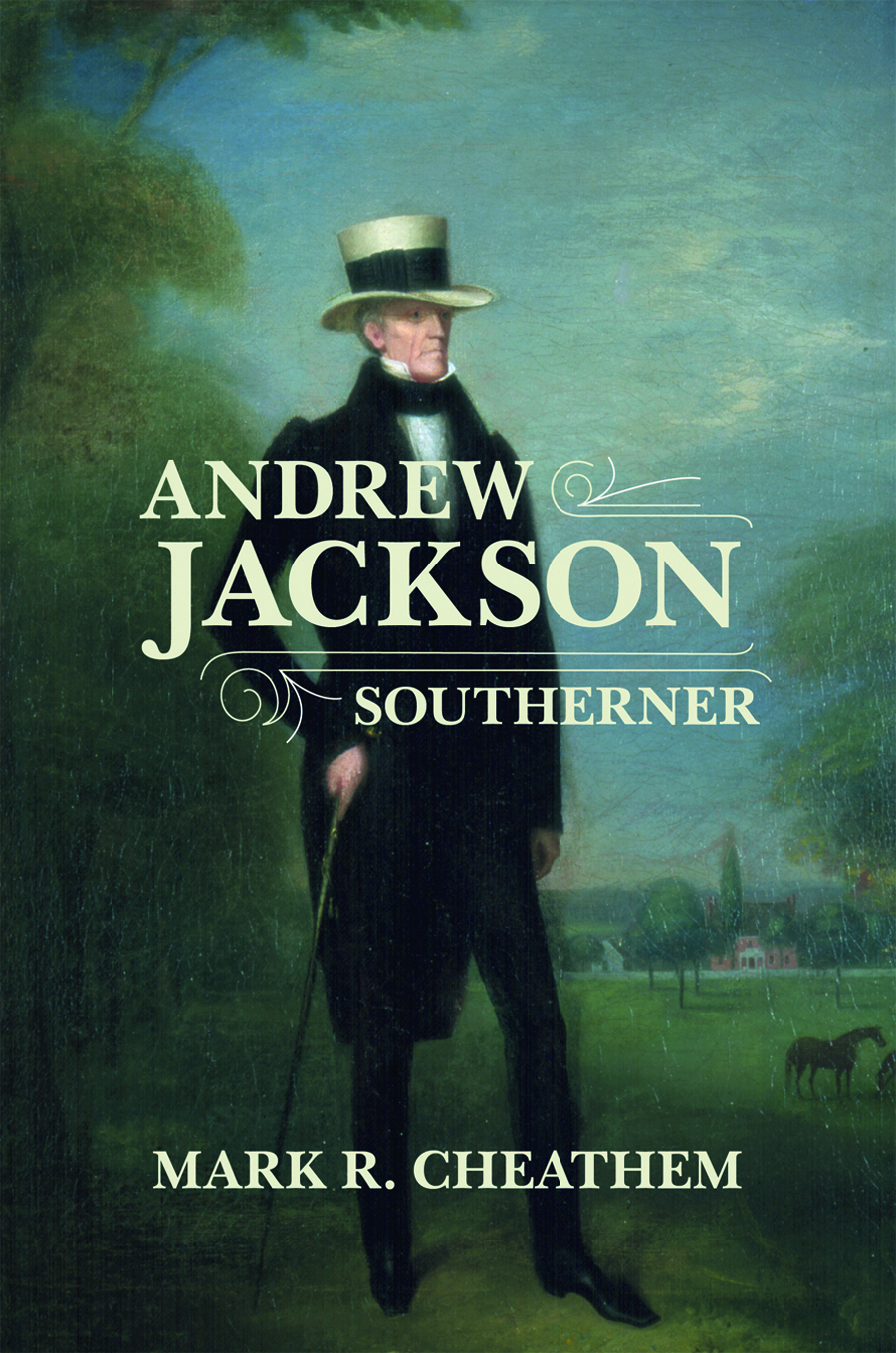 Andrew Jackson Southerner